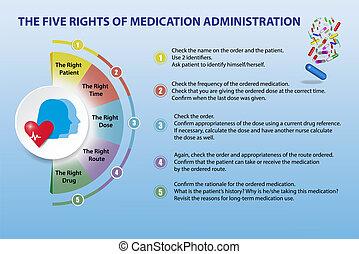 verwaltung, vektor, darstellung, rechte, fünf, medikation