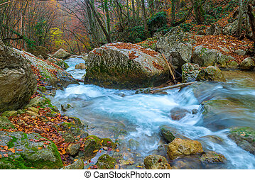 very beautiful nature - stones covered with moss and flowing water in the mountains on an autumn day