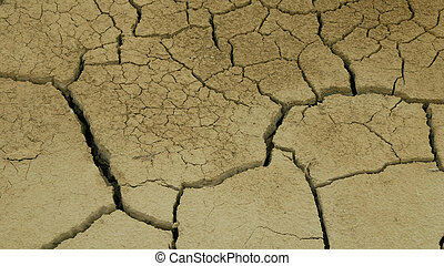 Very drought wetland, swamp and pond drying up the soil cracked crust earth climate change, environmental disaster and earth cracks very, death for plants and animals, soil dry degradation