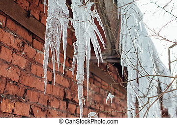Very large and dangerous icicles close up