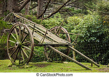 Very Old Farm Wagon