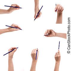 verzameling, van, potlood, in, een, hand