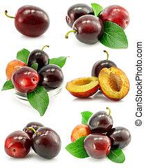 verzameling, van, pruim, vruchten, met, groene, vellen,...