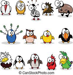verzameling, van, spotprent, vogels