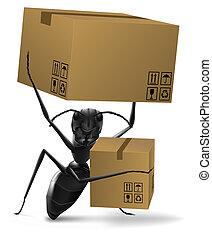 verzending, mier, concept, twee, order, aflevering, dozen, verdragend, verhuizing, nieuw huis, post, karton, of