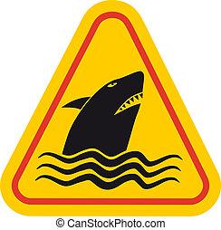 veszély, cápa