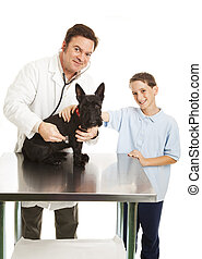 Vet and Child with Dog