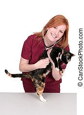 vet and kitty