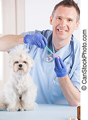 Vet dog and client