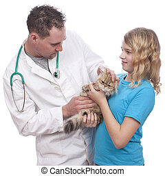 Vet examines the cat of a girl