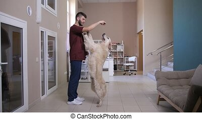 Vet training dog to stand on hind legs