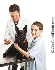 Vet Treats Boys Dog