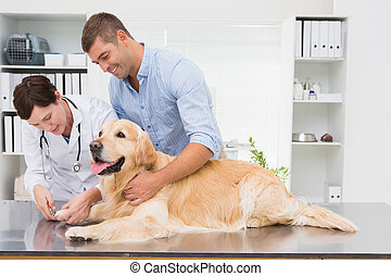 Vet using nail clipper on a dog with its owner