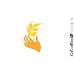 vete, vektor, korn, design, logo
