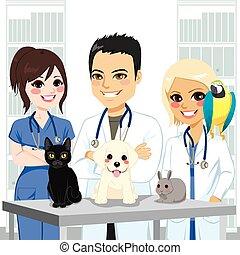 veterinário, animais estimação, equipe