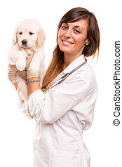 Veterinarian - A beautiful veterinarian with a golden...