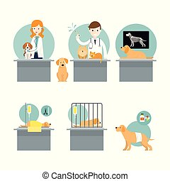 Veterinarian Checkup and Take Care Sick Pets - Cats and...