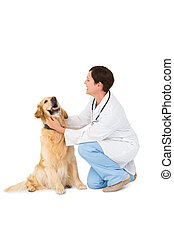 Veterinarian crouching with a dog