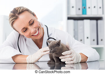 Veterinarian examining kitten - Happy female veterinarian...
