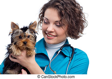 veterinarian holding a puppy