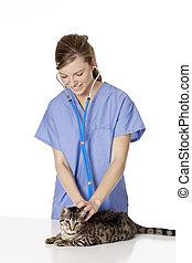 Veterinarian - Beautiful Caucasian woman Veterinarian...