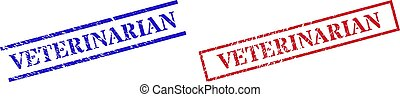 VETERINARIAN Textured Scratched Stamp Watermarks with Rectangle Frame