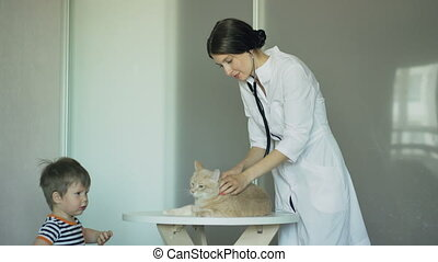Veterinarian woman examining cat with little boy owner in medical office