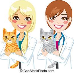 veterinario, abrazar, gato