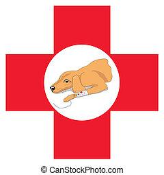 veterinario, cruz, perro rojo