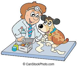 veterinario, perro, enfermo, pata