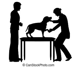 veterinario, perro, hembra