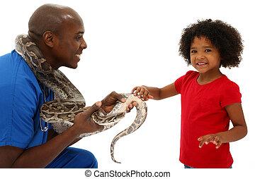 veterinario, y, niño preescolar, serpiente, dueño, porción,...