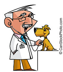Veterinary -  Veterinary auscultating dog