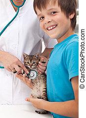 Veterinary care concept