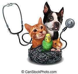 Veterinary Care - Veterinary care and pet medicine concept...