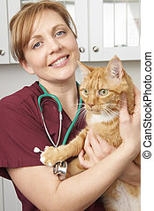 Veterinary Nurse Holding Cat In Surgery