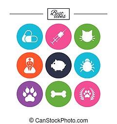 Veterinary, pets icons. Paw, syringe and bone.