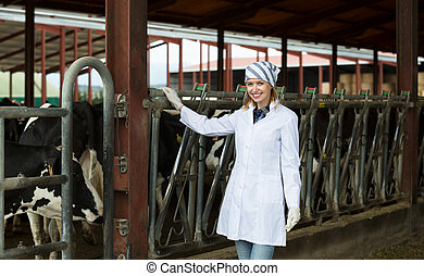 Veterinary technician with dairy cattle - Portrait of ...