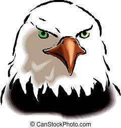 vetorial, águia