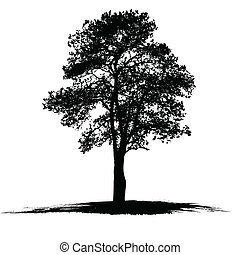 vetorial, árvore, desenho