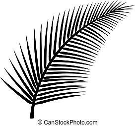 vetorial, árvore, folha palma, ilustração