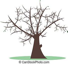 vetorial, árvore, folhas