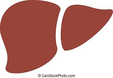 vetorial, ícone, fígado