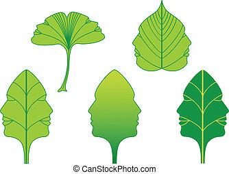 vetorial, caras, folhas, jogo, verde