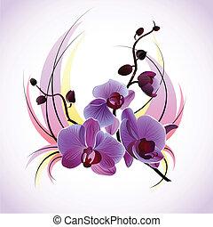 vetorial, cartão cumprimento, com, orquídeas
