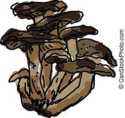 vetorial, cogumelos, experiência., ilustração, branca