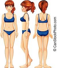 vetorial, corpo feminino