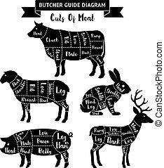 vetorial, cortes, diagram., guia, carne, açougueiro, illustrations.