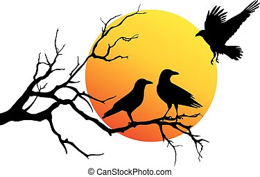 vetorial, corvos, ramo, árvore