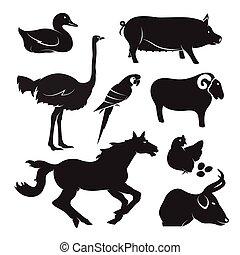 vetorial, cultive animal, jogo, branco, fundo
